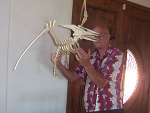 Flugsaurier Archosaurier