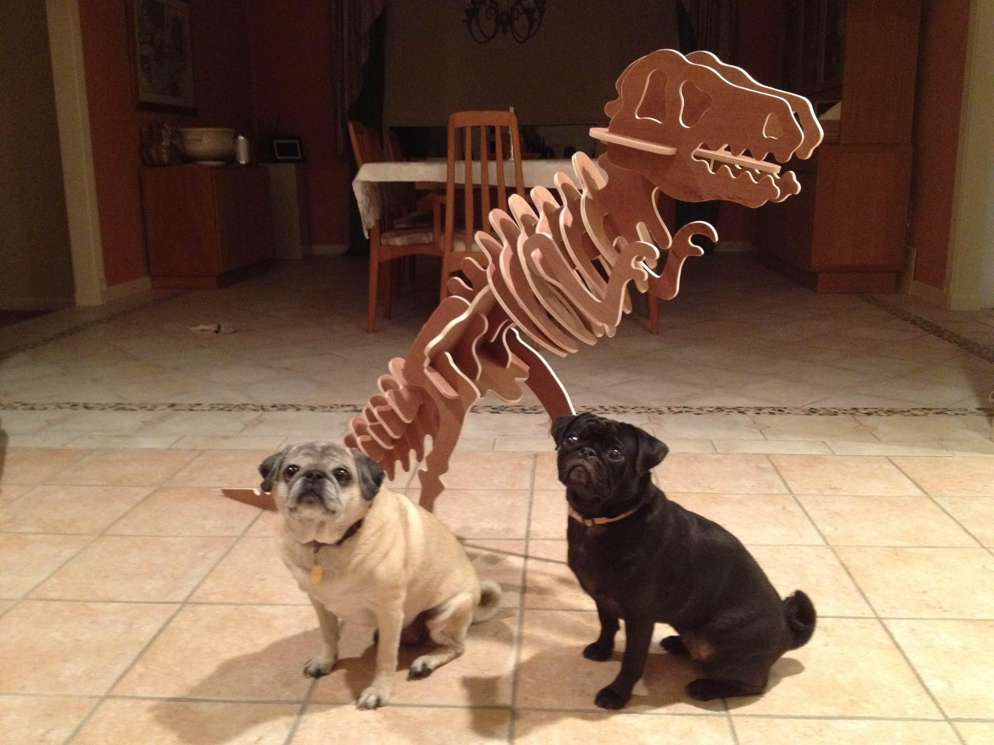 Gigantic T Rex