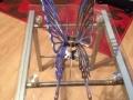 Dynamic Dragonfly