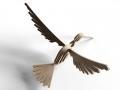 thumbs_hummingbird_2_bs_lasercut_cnc_plans_500