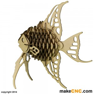 "The Angelfish ""Proof of Concept"" Picture from Ylona Maas"